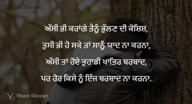 Assi bhi karange tainu bhullan di koshish-Share Shayari