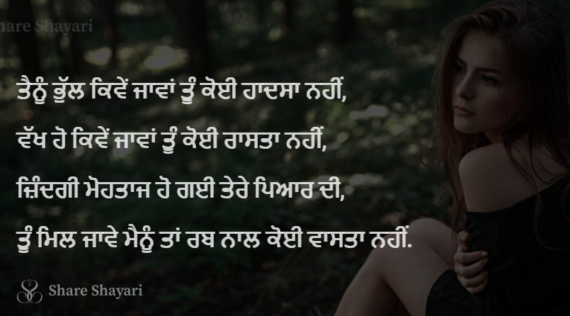 Tainu bhull kive jaava tu koi hadsa nai-Share Shayari